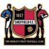 Sheffield Fem