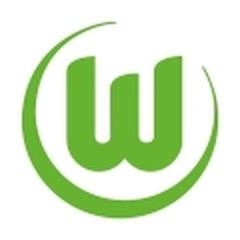 Wolfsburg Sub 17