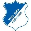 Hoffenheim Sub 17