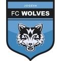 Äksi Wolves
