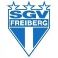 SGV Freiberg Sub 17