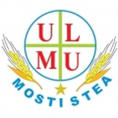 Mostiştea Ulmu