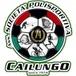 Cailungo