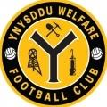 Ynysddu Welfare
