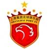Shanghái Port