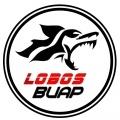 Lobos BUAP Sub 14