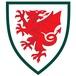 Gales Sub 16