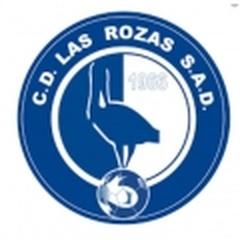 Las Rozas CF B