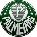 Palmeiras Fem