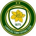 Llanidloes Town FC