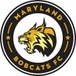 Maryland Bobcats