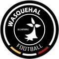 Wasquehal Sub 19