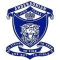 Andersernion