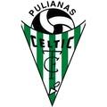 Celtic Pulianas B