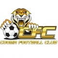 >Cooma Tigers