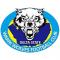 Warri Wolves FC