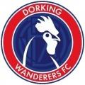 >Dorking Wanderers
