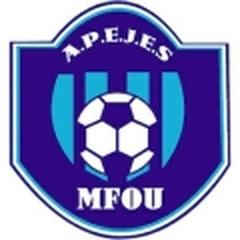 APEJES Academy