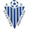 A.D. Sporting Hortaleza