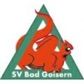 Bad Goisern