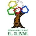 Olivar-Estadio Miralbueno