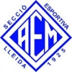 AEM SE C