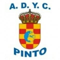 Pinto A