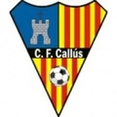 Callus A