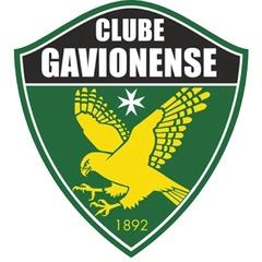 Gavionenses