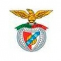 Viseu e Benfica