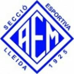 AEM C