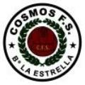 Cosmos FS