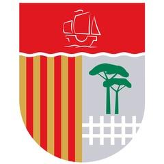 Colegio El Vedat B