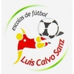 Luis Calvo Sanz C