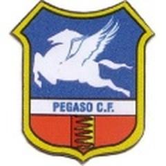 Pegaso B