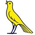 Modena Sub 19