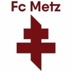 Metz Sub 19