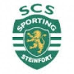 Steinfort