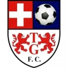 Tomás Greig