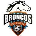 Broncos del Sur