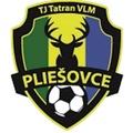 Tatran VLM