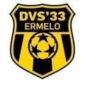 DVS'33