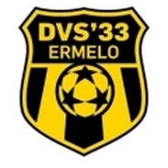 DVS .33