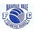 Dyffryn Nantlllle
