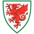 Gales Sub 17