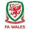 Gales Futsal