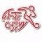 Suiza Futsal