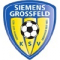 Grossfeld