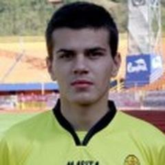 C. Stefanescu