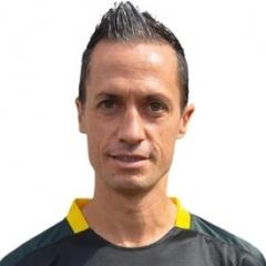 M. Domeniconi